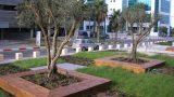 אדניות מעץ אורן מתם חיפה